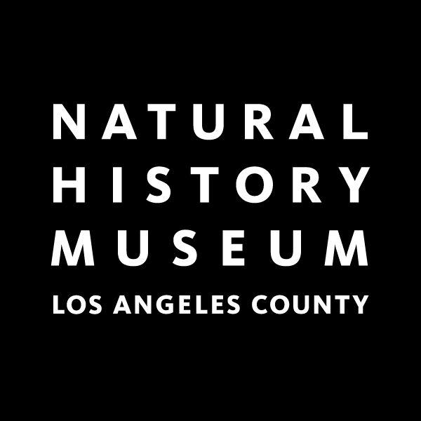 https://nhm.org/site/activities-programs/night-of-ideas